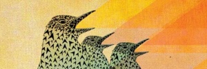 zeroh_dawn chorus_header